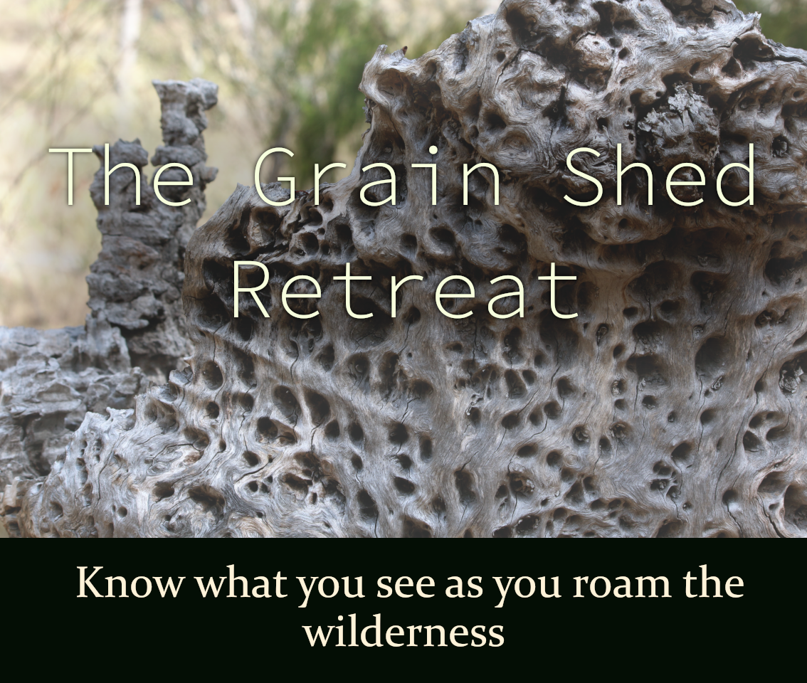 The Grain Shed Retreat packages. The Grain Shed Retreat is owned and operated by Darling Downs Wellness Therapies at Goomburra. Emma Walton Guiding, a Nature Guide of South East Queensland can guide at The Grain Shed Retreat, Goomburra. The Grain Shed Retreat is accommodation. The Grain Shed Retreat is disability accessible. Emma Walton Guiding is disability accessible. Emma Walton Guiding offers regular tours at The Grain Shed Retreat, Goomburra. Private tours available at The Grain Shed Retreat. Emma Walton Guiding is a package offered by The Grain Shed Retreat.