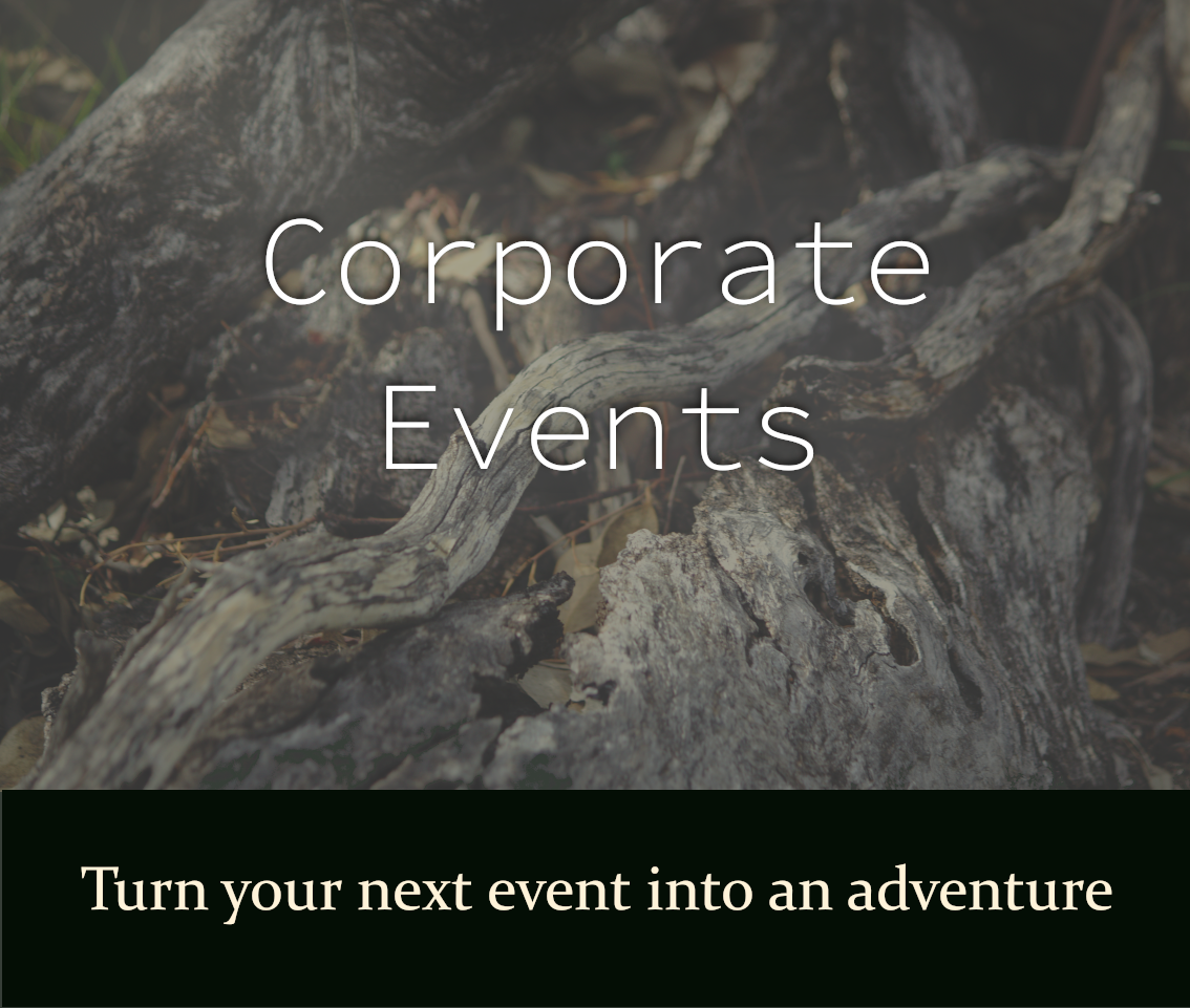 Emma Walton Guiding offers corporate events. Make your next corporate event an adventure. Adventure can be your next corporate event. Corporate Events is by Emma Walton Guiding, a nature guide of South East Queensland